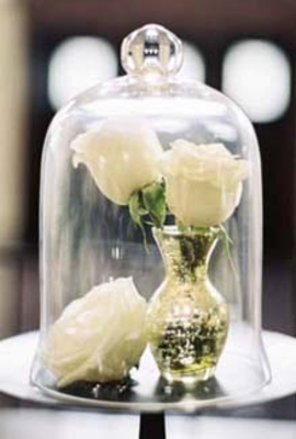 Bell Jars, Glass Cloches