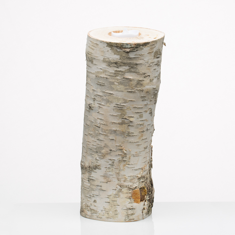 """10"""" Natural Birch Tree Branch Candle Holders"""