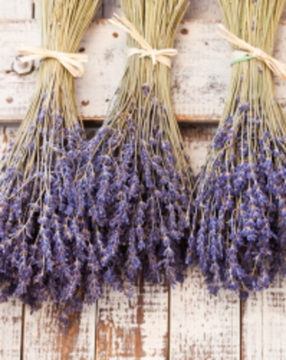 DIY: Designing with  Dried Herbs and Botanicals