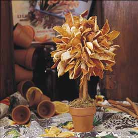 DIY Make a Dried Orange Peel Topiary Tree - Click to enlarge
