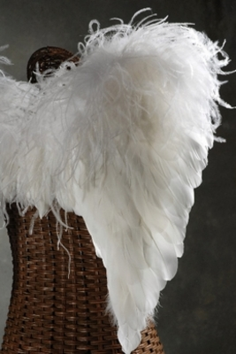 Handcrafted Feather Angel Wings