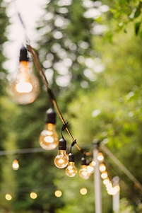 String Lights - Party Lights- Wedding Lights