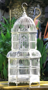 Bird cages birds nests save on crafts wedding supplies for Save on crafts wedding