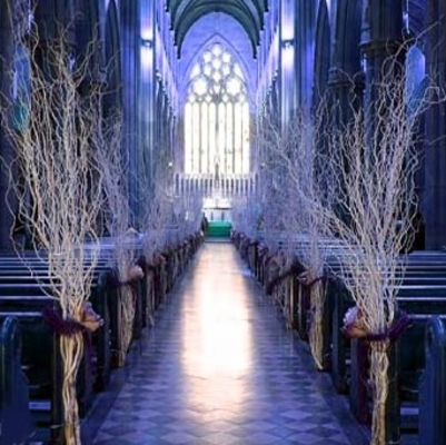 Diy weddingsideas how tos winter wedding decorations how to make iced branches junglespirit Images