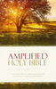 Amplified Holy Bible (Paperback - Case of 20)