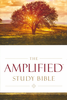 Amplified Study Bible, Large Print (Hardcover - Case of 8)