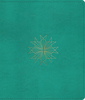 ESV Journaling Bible (Imitation Leather, Teal w/Resplendent Cross - Case of 10)