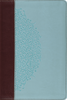ESV Personal Size Study Bible (TruTone, Chocolate/Blue, w/Ivy Design - Case of 12)