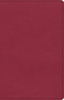 ESV Premium Gift Bible (Imitation Leather, Berry - Case of 24)