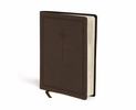 NIV Journal The Word Bible (Imitation Leather, Brown - Case of 12)