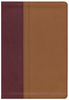 NIV Quest Study Bible (Imitation Leather, Tan/Burgundy - Case of 12)