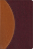 NIV Study Bible, Compact (Imitation Leather, Tan/Burgundy - Case of 12)