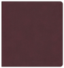 NRSV XL Bible w/Apocrypha (Imitation Leather, Burgundy - Case of 12)