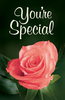 Tract: You're Special, Ted Griffin (Tracts - Case of 250)