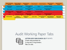 Audit Working Paper Index Tabs