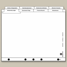 LLC Index Tabs