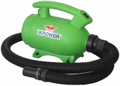 B-55 Home 2-Speed Pet Dryer and Vacuum with 3 Nozzle Accessories and 2 HP - Green