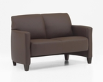 Monaco Contemporary Love Seat - Java and Brown Simulated Leather [CD001205B5070-FS-DMI]