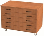 Storage Solution Paper Storage with Drawers with Casters - 36''H x 48''W [SS1010-AC-NSL]