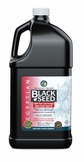 Egyptian Black Seed Oil - 1 Gallon