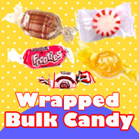 Wrapped Bulk Candy