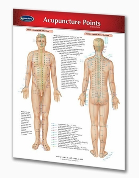Acupuncture Points 8 1/2x11 Laminated