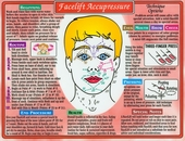 Face Lift Acupressure Chart 8 1/2 x 11
