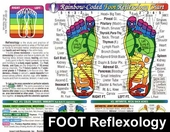"Foot Reflexology 8 1/2"" x 11"" Chart"