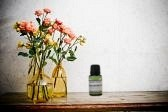 Leyden House Essential Oil Blends