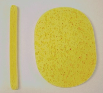 Oval Sponges