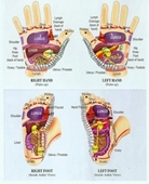 Folding Reflexology Card