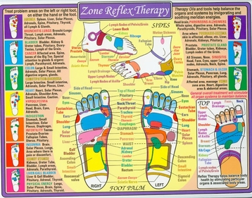 Zone Reflex Therapy 8 1/2x11 Laminated Chart