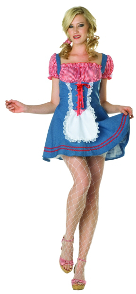 Adult Sexy Square Dancer Costume