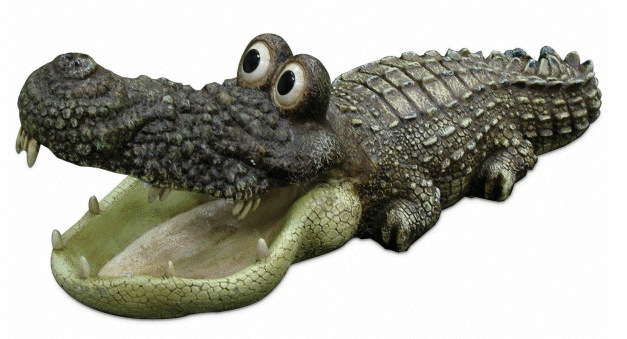 Big Eyed Floating Alligator