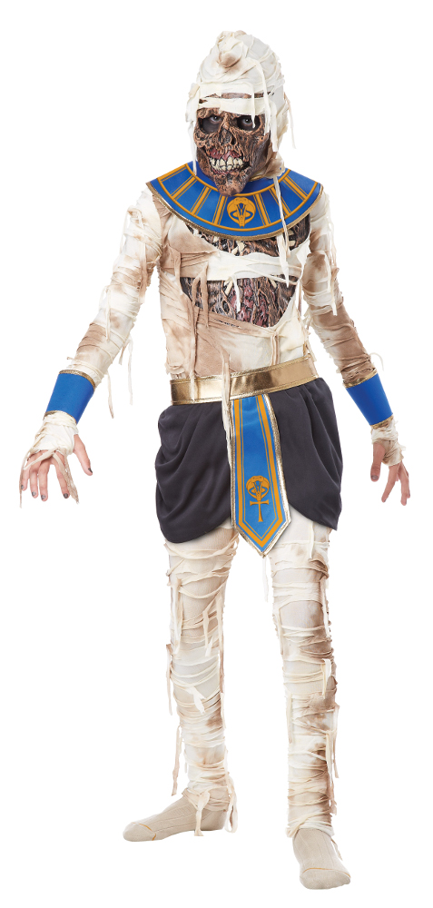 Child Pharaoh's Revenge Costume