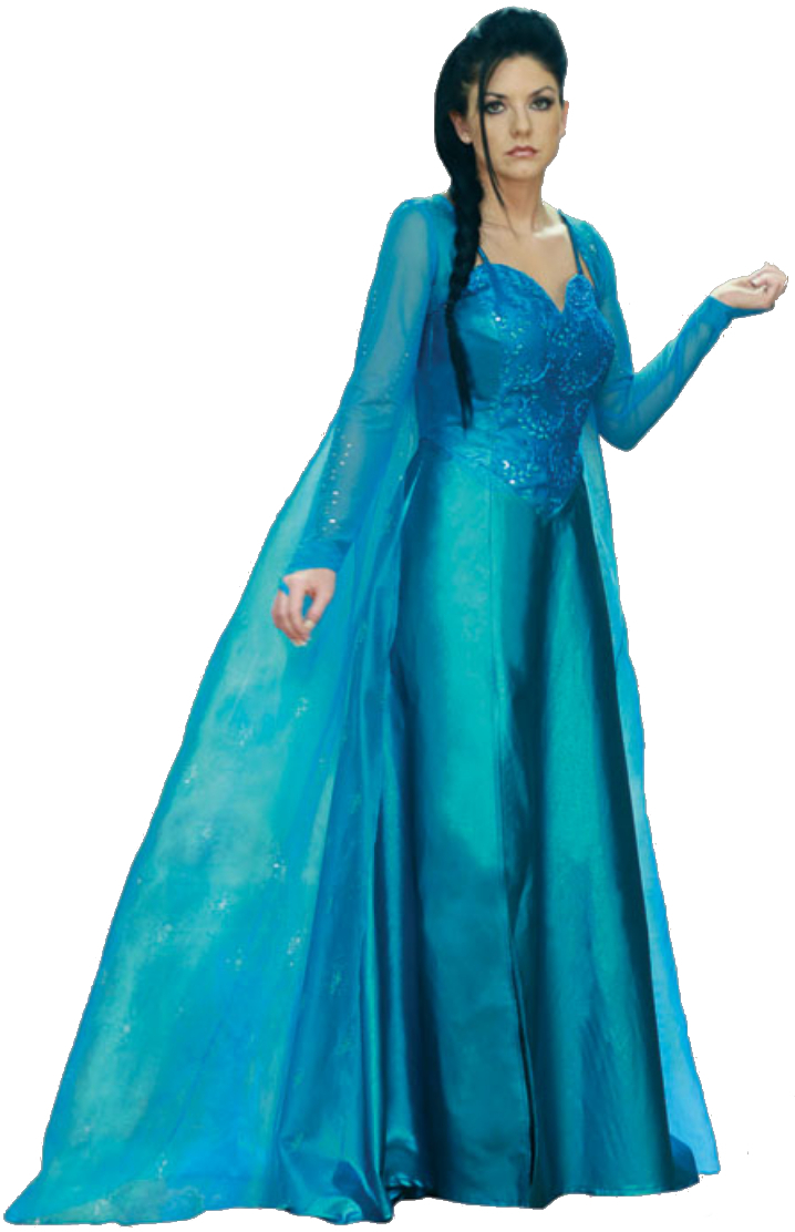 Adult Frozen Elsa Blue Dress