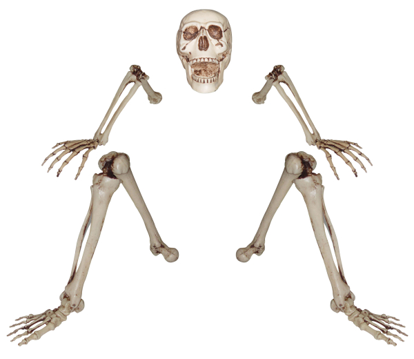 Life-Size Skeleton Rising From the Dead