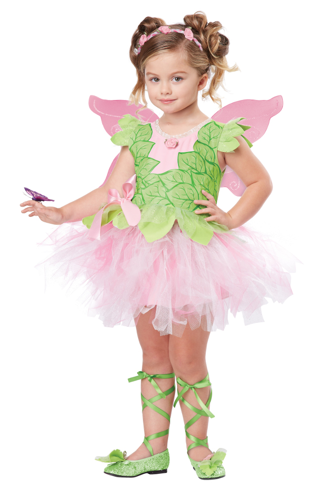 Toddler Blossom Fairy Costume  sc 1 st  Brands On Sale & Toddler Blossom Fairy Costume | Fairy Costumes | brandsonsale.com