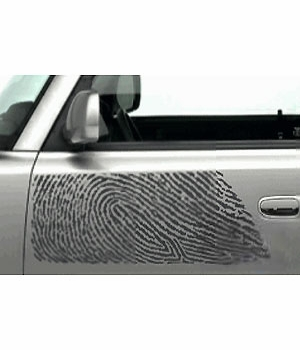 Scion xB Body Graphics 2003-2005 Thumb Print Driver's Side Gray Sold Individually Genuine Scion #PT211-52L40-01