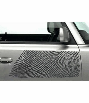 Scion xB Body Graphics 2003-2005 Thumb Print Passenger's Side Gray Sold Individually Genuine Scion #PT211-52R40-01