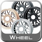 Wheel & Hub Cap Paint