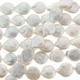 White 14-15mm Coin Freshwater Pearl Strand
