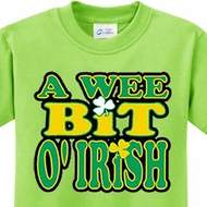 A Wee Bit Irish Kids Shirts