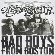 Aerosmith Shirts