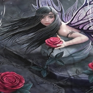 Anne Stokes Rose Fairy Sublimation Shirts