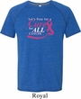 Breast Cancer Awareness Pray for a Cure Mens Tri Blend Shirt