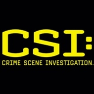 CSI: Crime Scene Investigation Juniors T-shirts