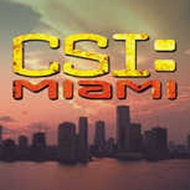 CSI: Miami T-Shirts