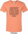 First Amendment Mens Tri Blend V-neck Shirt