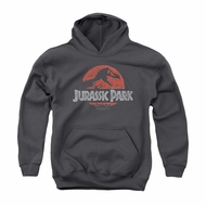 Jurassic Park Youth Hoodie Faded Logo Charcoal Kids Hoody